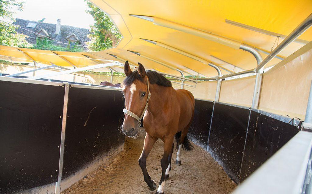 poneyclub-centreequestre-paddock-tigery-essonne-ecurie-marcheur